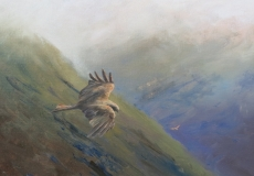 Looking for breakfast in the Black Mountains, oil, 20x16 ins